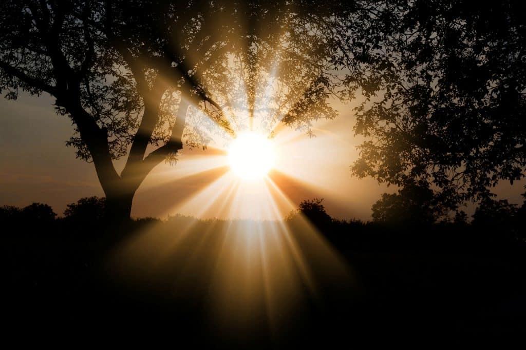 sunny-weather
